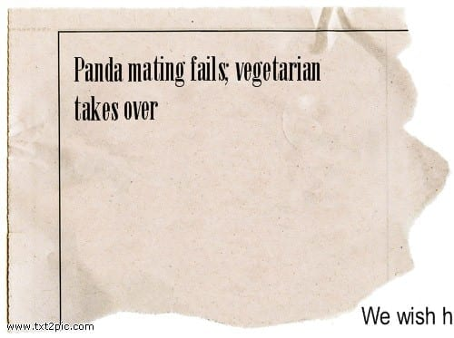 Panda mating fails, vegetarian takes over