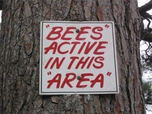 "Reads: ""bees"" active in this ""area"""