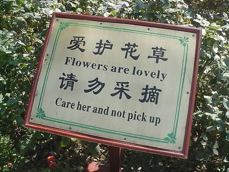 "Sign reads: ""flowers are lovely care her and not pick up"""