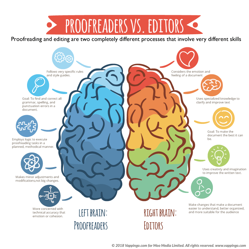 Image of the brain showing the differences between editors and proofreaders