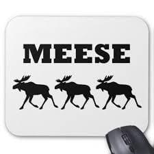 Plural of moose?