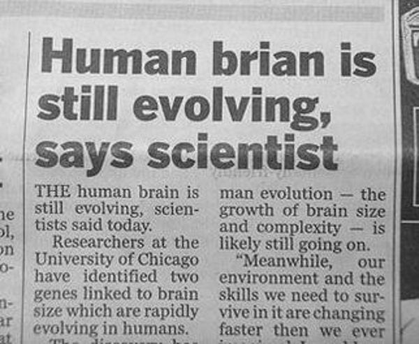 Brian is evolving